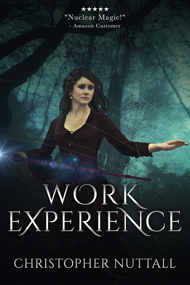Work Experience - Schooled in Magic - Book 4